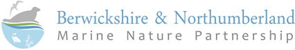 Berwickshire & Northumberland Marine Nature Partnership